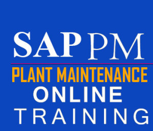 SAP PM Online Training