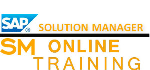 SAP SM Online Training