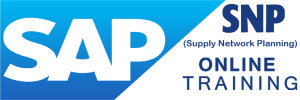 SAP SNP Online Training