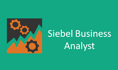 SIEBEL Analytics Online Training